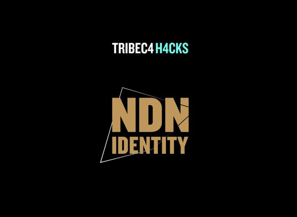 Ndn_identity_web_graphic-01